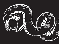Koozie Rattlesnake