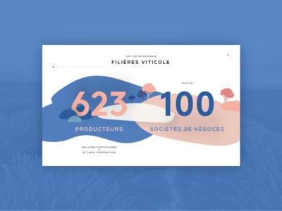 Vins de Provence - Infographics provence infographics illustration ux ui carousel french wine slider home page siteweb web