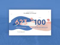 Vins de Provence - Infographics