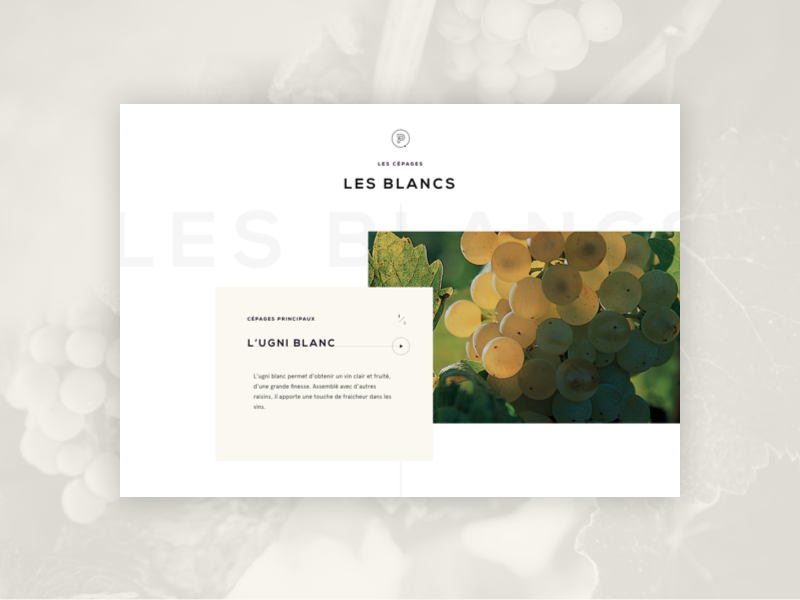 Vins de Provence - Detail Page grape provence ux ui carousel french wine slider home page siteweb web