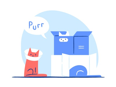 MAU: cat's love to boxes never ends mau purrr thick love box fun animal cats cat