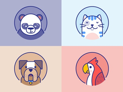 Wonde: Animals for kids colors kitty animal creatures bird parrot page login panda dog cat animals