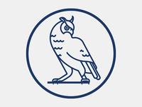 Leeds United Owl 2
