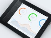 iPad Stats App