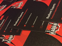 Radiant Esports - Business Cards