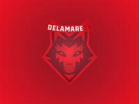 DelamareTV