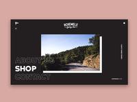 ACC Website Concept