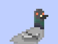 Pigeonlarge