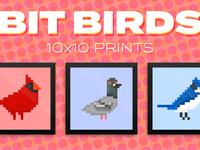 Bit birds prints