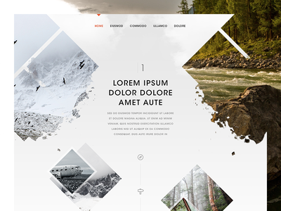 Inspired by Nature website design nature home landing white dark photography fun timeline