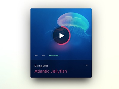 Diving with Jellyfish