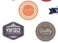 Vintage Badges Wdf