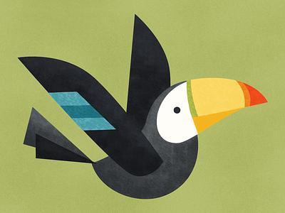 Toucan illustration animal toucan geometric bird fly wing