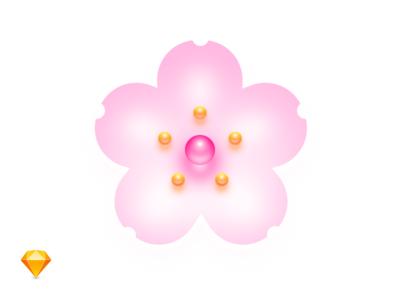 Sakura Season Open