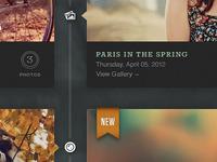 Paris In The Spring