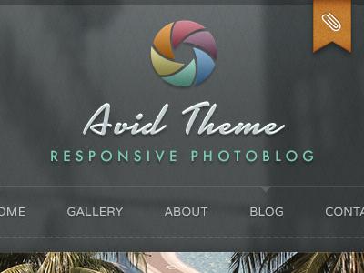 Avid Photography Theme Launch wordpress photography blog responsive shutter avid navigation texture pattern blur orange green