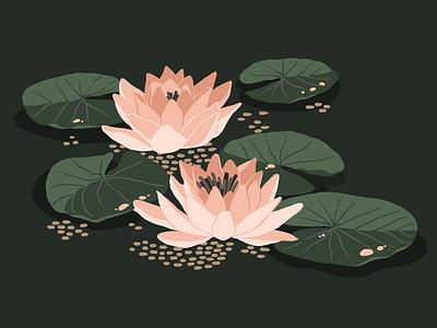 Water Lily print design print flower lily procreate app artwork poster art poster design graphic design art illustraion