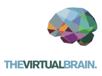 The Virtual Brain corporate identity