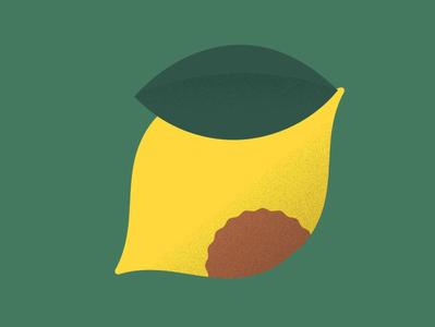Lemon 🍋 summer lemonade grain gradient fruit lemon design vector shapes illustration illo