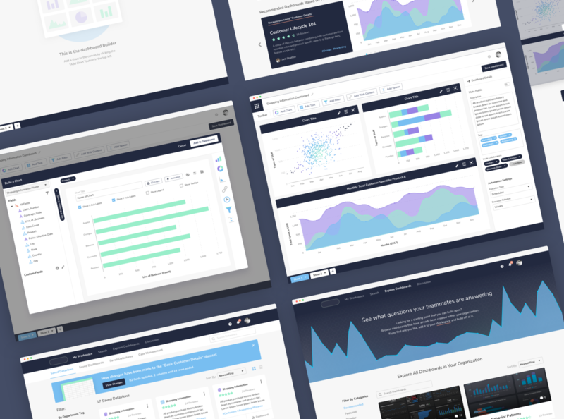 Data Catalog and Visualizer data visualization dataviz data governance data catalog data visualizer chart dashboard application indianapolis ui ux