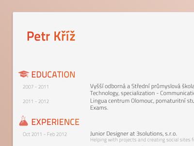 Responive resume pkart czech minimalist clean orange