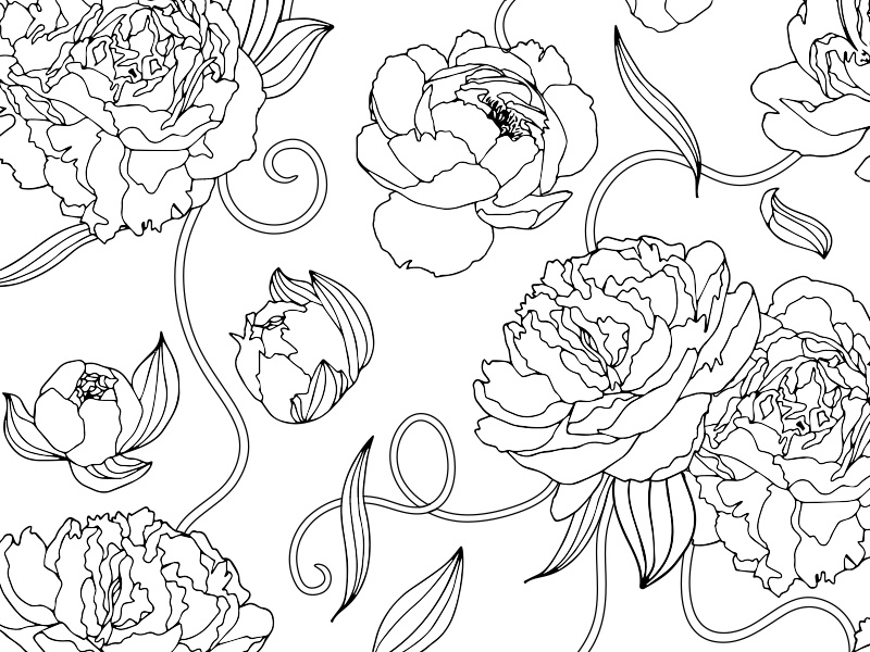 coloring book pages pucca | Peonies Coloring Page by Amanda Schrembeck | Dribbble ...