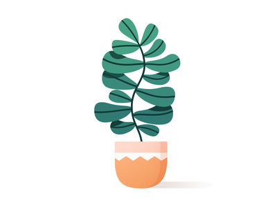 Houseplant pattern apartment mexican leaf leaves nature vectober vector happy drawing decor home color illustration cute gardening planter houseplant plant