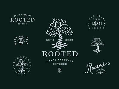 Rooted Craft Kitchen Brand System restaurant branding restaurant logo tree brand branding logo tree logo tree root rooted