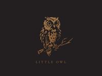 Owl mark concept