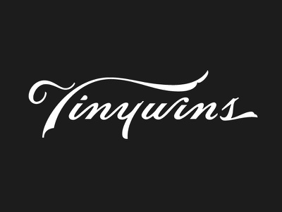 TinyWins Script Concept lettering black swash tinywins typography ligatures script type