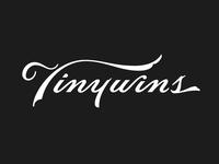 TinyWins Script Concept