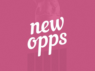 New Year - New Opps
