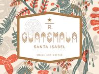 Guatemala Santa Isabel