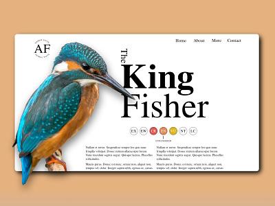King Fisher Web Design web design ui design typography minimal web design