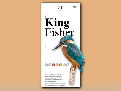 King Fisher Mobile Design mobile mobile design mobile ui web web design ui design typography minimal design