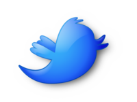 Custom, High Gloss Twitter Icon