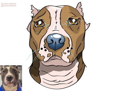 Save A Pitbull custom dog vector logo branding custom artwork design graphic design animals illustration pitbull logo dog logo dog artwork dog typogrpahy dog art dog pitbull typography pitbull quote pitbull artwork pitbull art pitbull