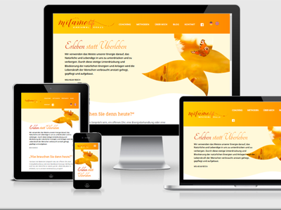 Metamo Life webdesign webdevelopment