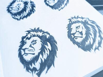 Lion Logo Sketches