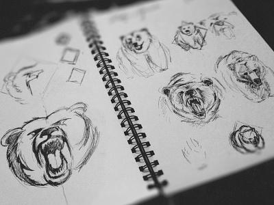 WIP Bear Prelim Sketches bear sketches drawing ink logo prelim