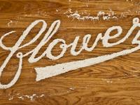 Flower script type full