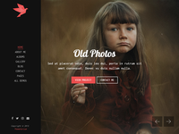 FreeBird - Photography Portfolio HTML Website Template