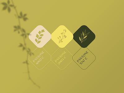 Saghe.art visual identity palette color design visual identity logo fashion branding brand