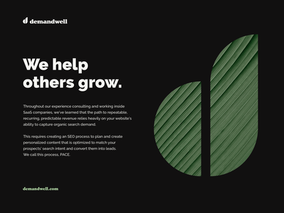 Demandwell brand exploration high alpha brand identity logo branding