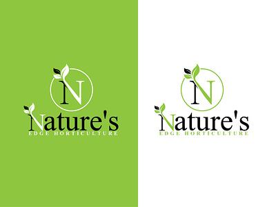 N Letter Leaf Icon logo leaf corporate branding design corporate logo n nature logo nature logo n leaf icon n leaf logo n icon logo design business branding logo maker vector illustration icon design branding modernlogo minimalistlogo logotype logo