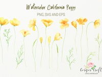 California Poppy Clipart PNG and Vector