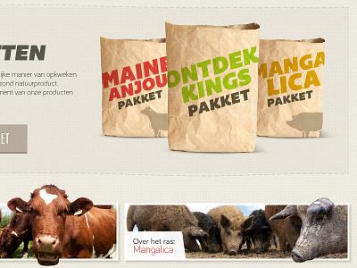 Donderij homepage website pig cow banner bag bemio bariol bahamia packaging homepage webdesign