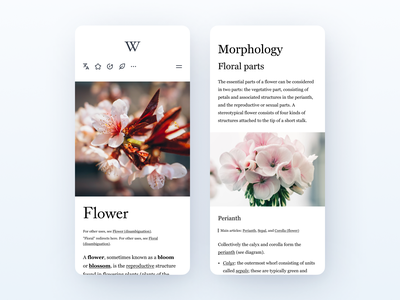 Wikipedia Layout app minimal ux typography art design minimalistic 2020 web ui