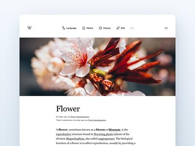 Wikipedia Desktop Layout wiki ux web ui typography minimalistic minimal app design art app 2020