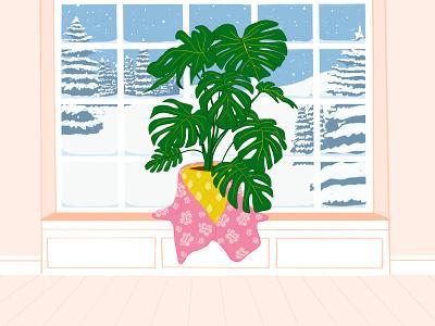 Plant Ethics procreate illustration warm cold tropical plant tropical monstera deliciosa monstera plants